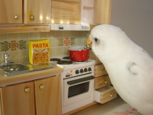 japanesebirdcookingspaghetti